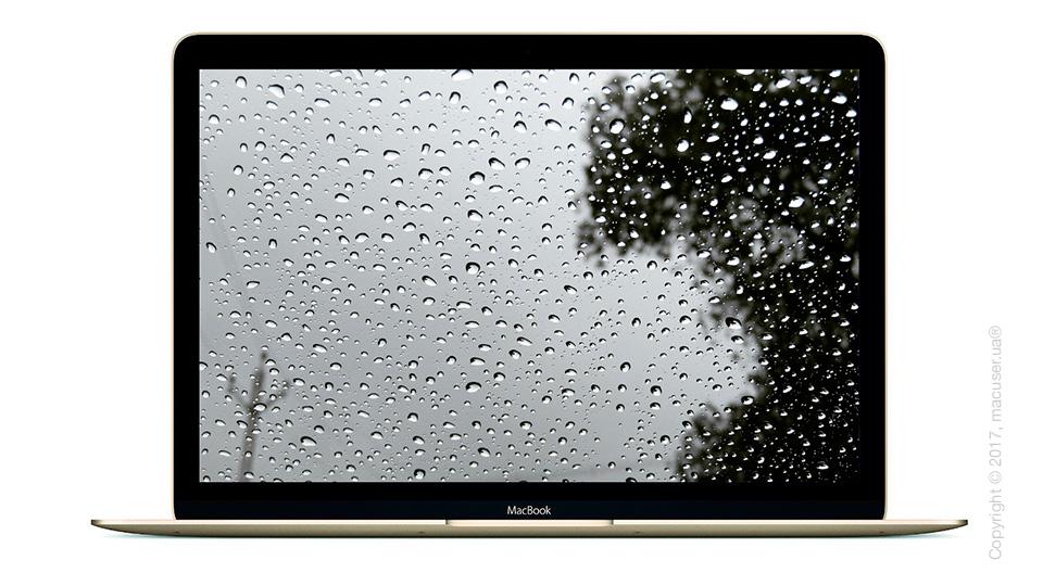 Что делать если Вы залили свой MacBook?