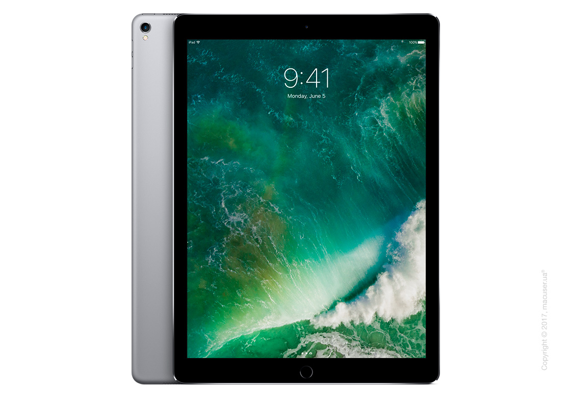 Apple iPad Pro 12,9 дюйма Wi-Fi+Cellular 256GB, Space Gray New